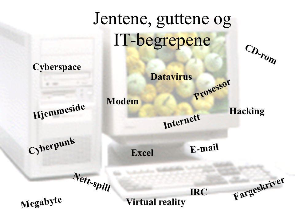 Jentene, guttene og IT-begrepene