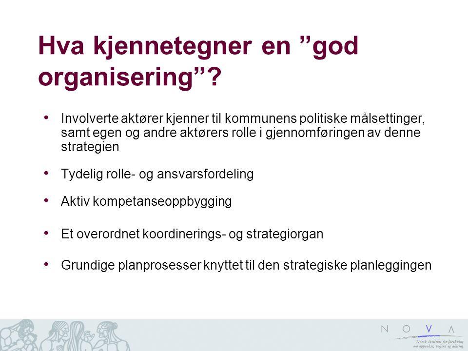 Hva kjennetegner en god organisering