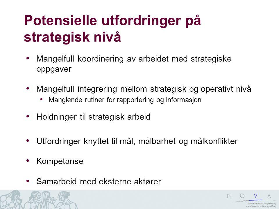 Potensielle utfordringer på strategisk nivå