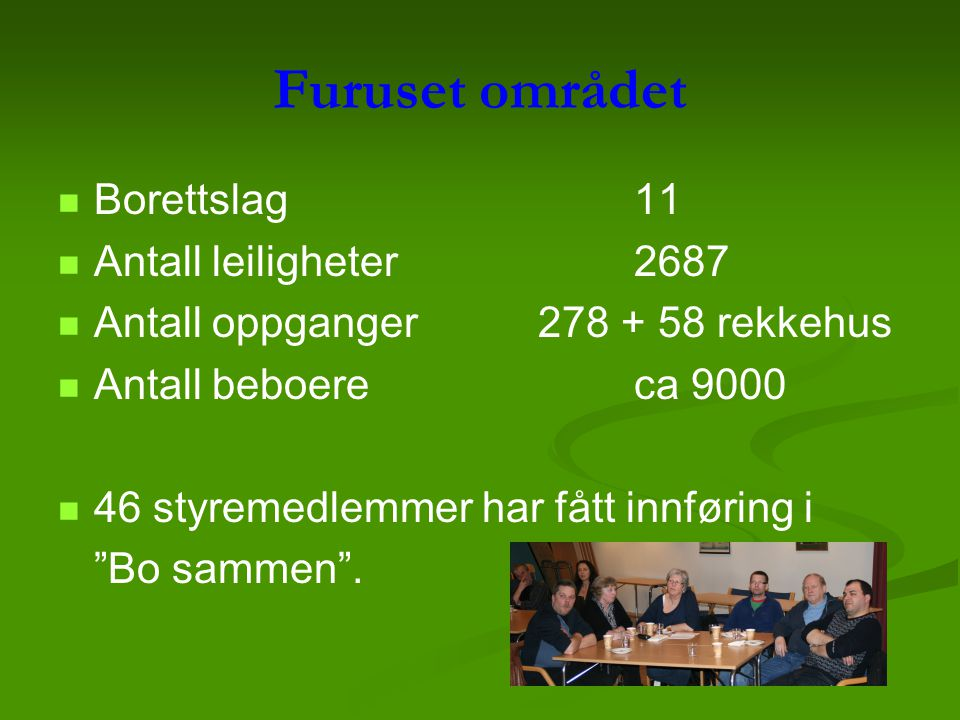 Furuset området Borettslag 11 Antall leiligheter 2687