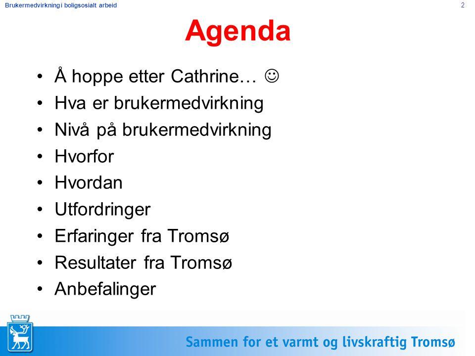 Agenda Å hoppe etter Cathrine…  Hva er brukermedvirkning