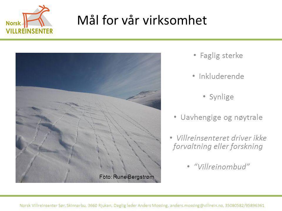 Norsk Villreinsenter Sør