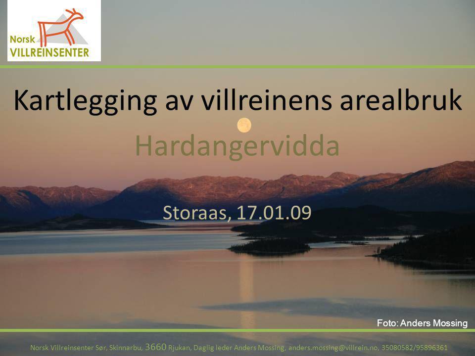 Kartlegging av villreinens arealbruk Hardangervidda Storaas, 17.01.09