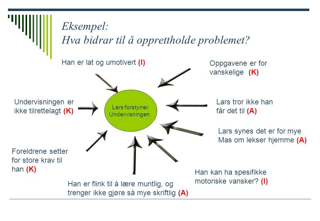 Eksempel: Hva bidrar til å opprettholde problemet