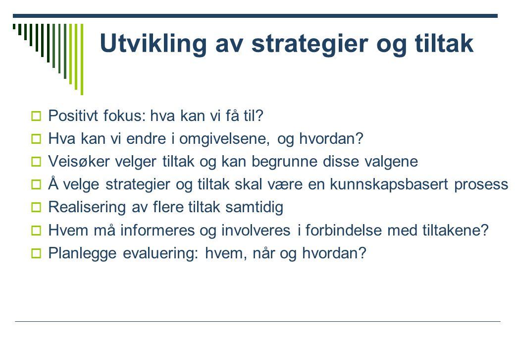 Utvikling av strategier og tiltak