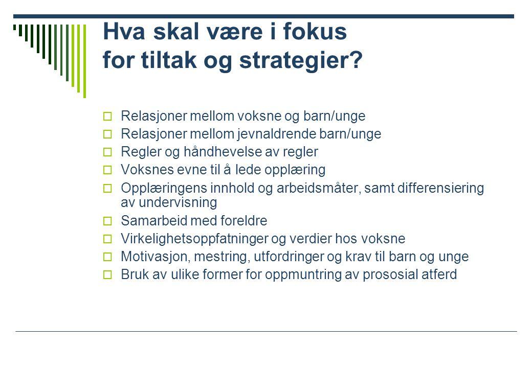 Hva skal være i fokus for tiltak og strategier