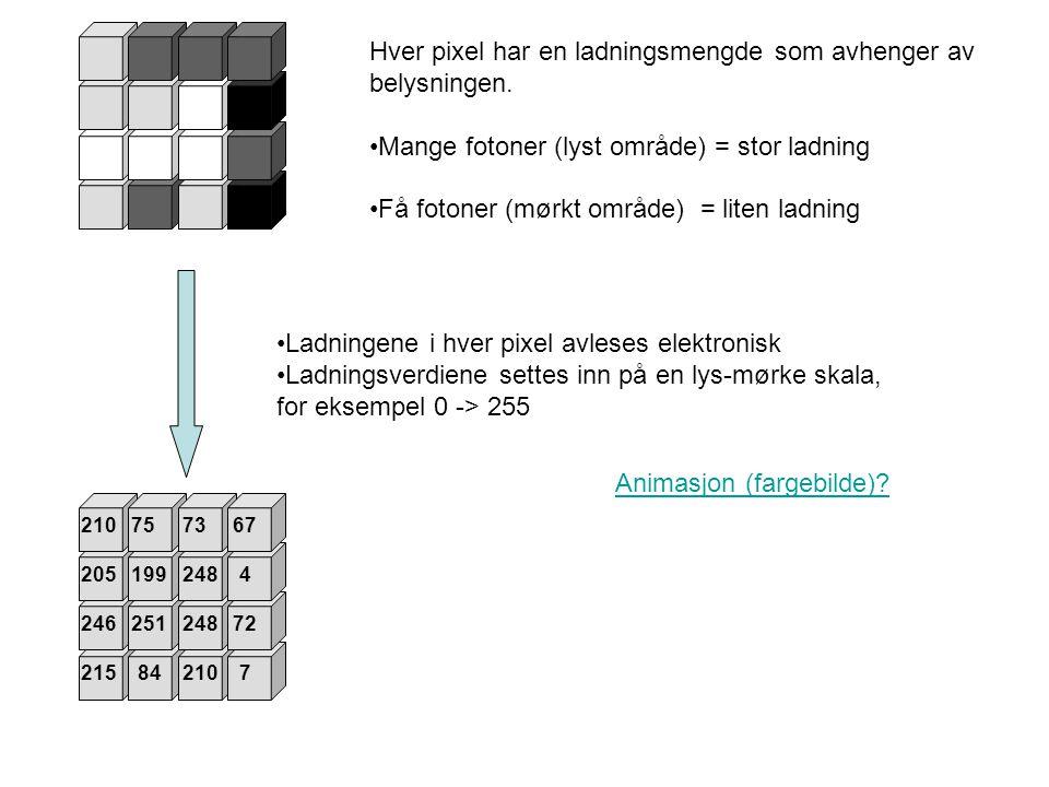 Hver pixel har en ladningsmengde som avhenger av belysningen.