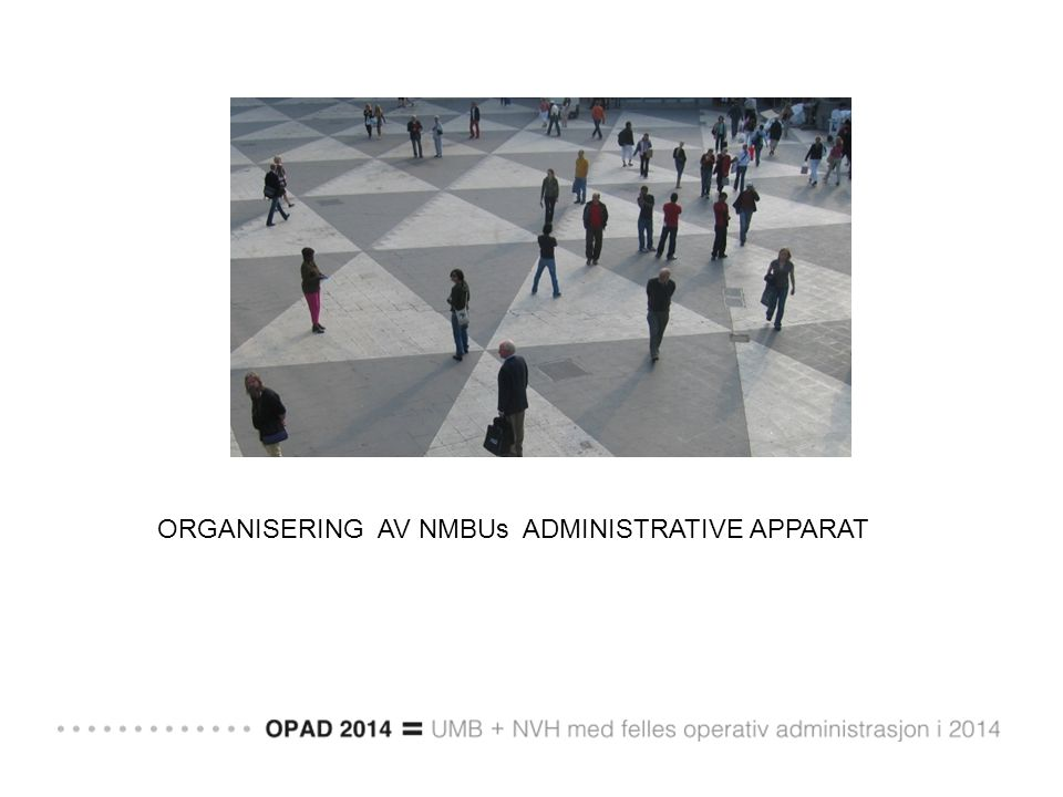 ORGANISERING AV NMBUs ADMINISTRATIVE APPARAT