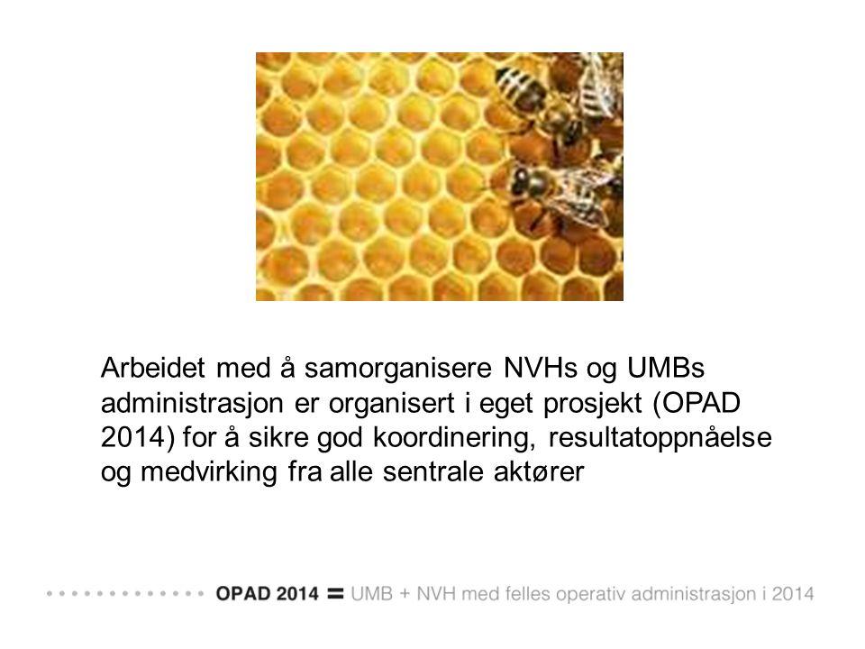 Arbeidet med å samorganisere NVHs og UMBs administrasjon er organisert i eget prosjekt (OPAD 2014) for å sikre god koordinering, resultatoppnåelse og medvirking fra alle sentrale aktører