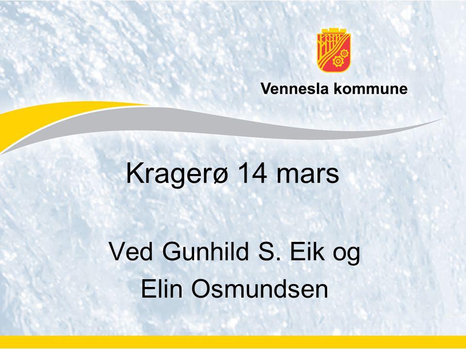 Ved Gunhild S. Eik og Elin Osmundsen