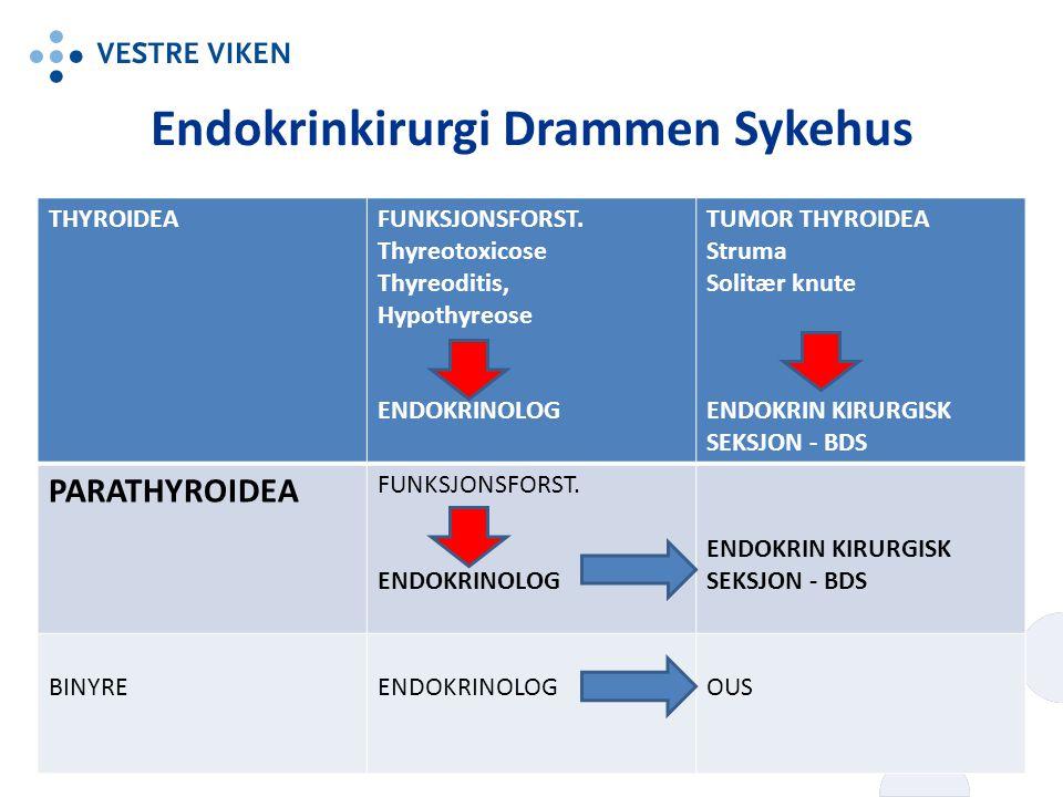 Endokrinkirurgi Drammen Sykehus