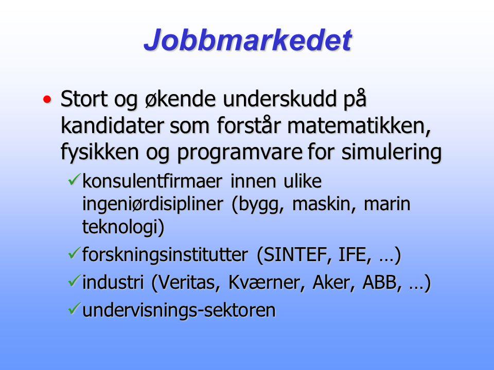 Jobbmarkedet Stort og økende underskudd på kandidater som forstår matematikken, fysikken og programvare for simulering.