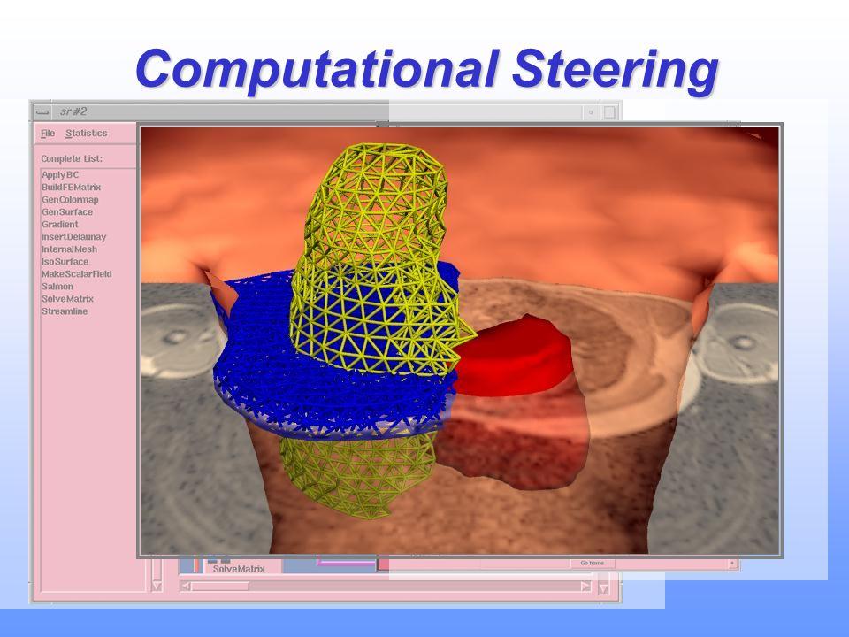Computational Steering
