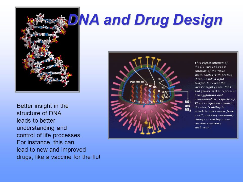 DNA and Drug Design Better insight in the structure of DNA