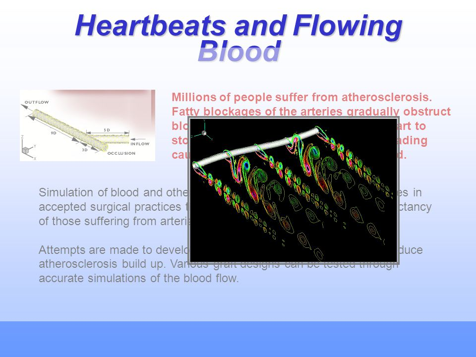 Heartbeats and Flowing Blood