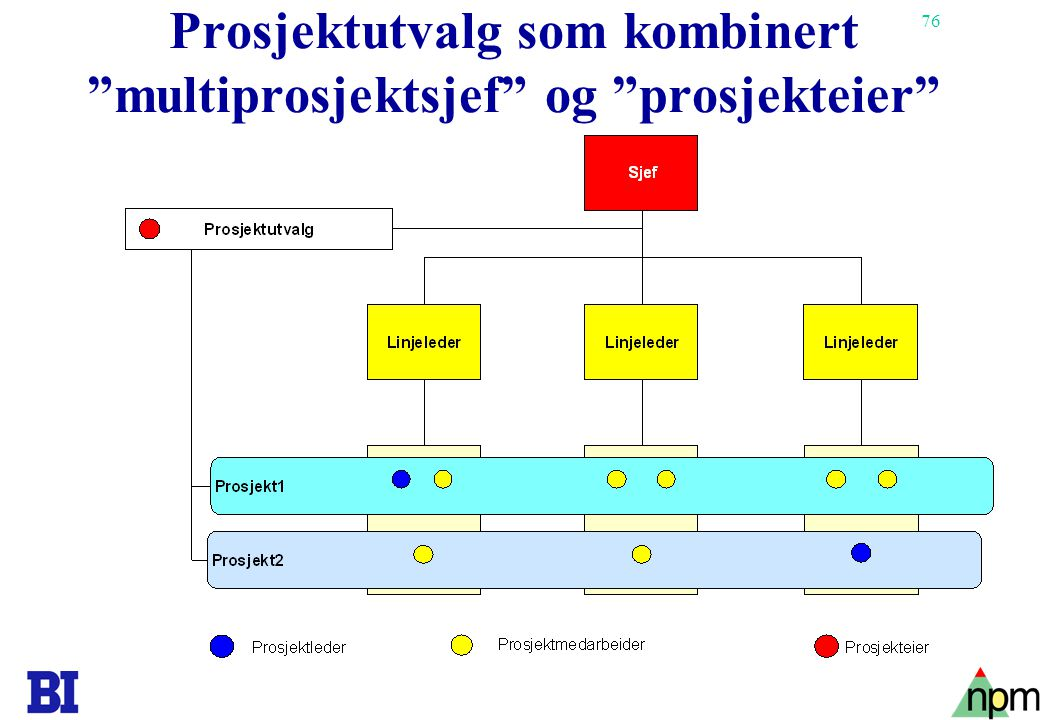 Prosjektutvalg som kombinert multiprosjektsjef og prosjekteier