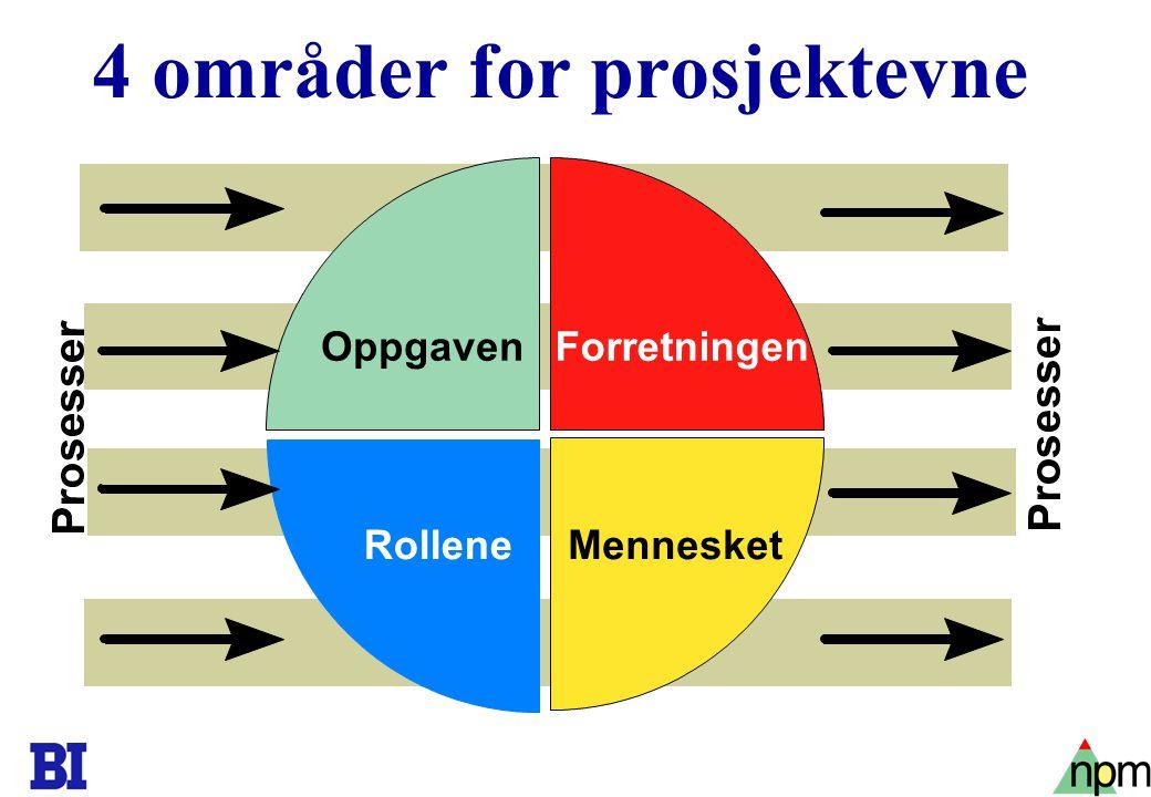 4 områder for prosjektevne