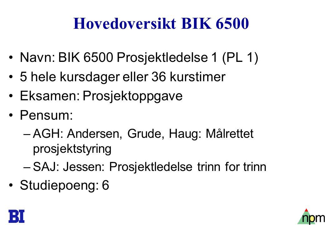 Hovedoversikt BIK 6500 Navn: BIK 6500 Prosjektledelse 1 (PL 1)