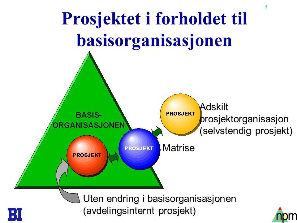 Prosjektet i forholdet til basisorganisasjonen