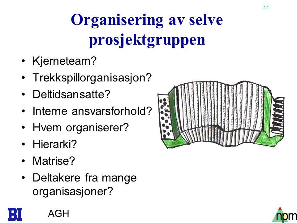 Organisering av selve prosjektgruppen