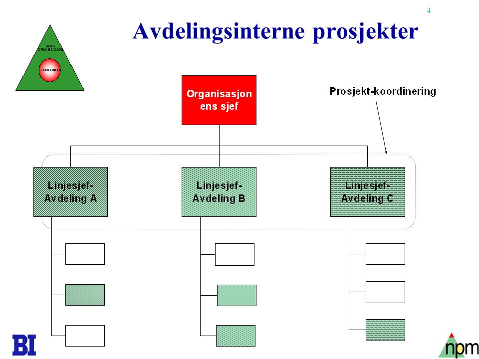 Avdelingsinterne prosjekter