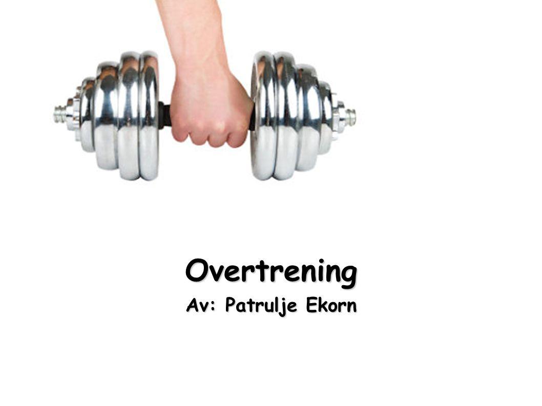 Overtrening Av: Patrulje Ekorn
