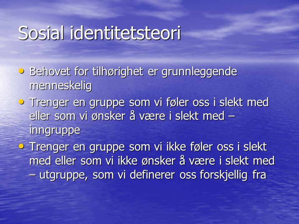 Sosial identitetsteori