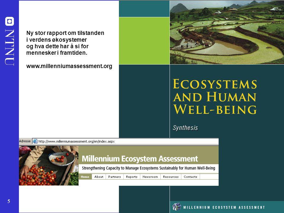 Ny stor rapport om tilstanden i verdens økosystemer