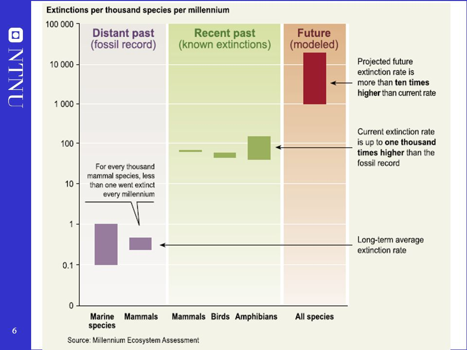 Lilla viser 0.1-1 art ble utryddet per 1000 arter per 1000 år.
