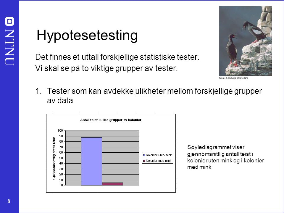Hypotesetesting Det finnes et uttall forskjellige statistiske tester.