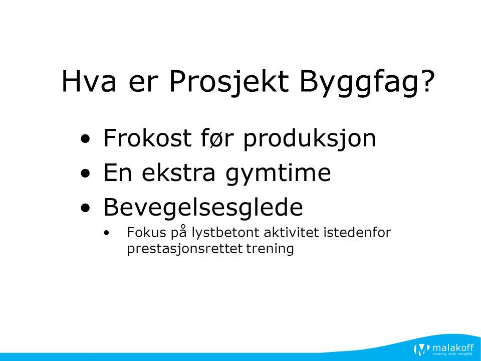 Hva er Prosjekt Byggfag