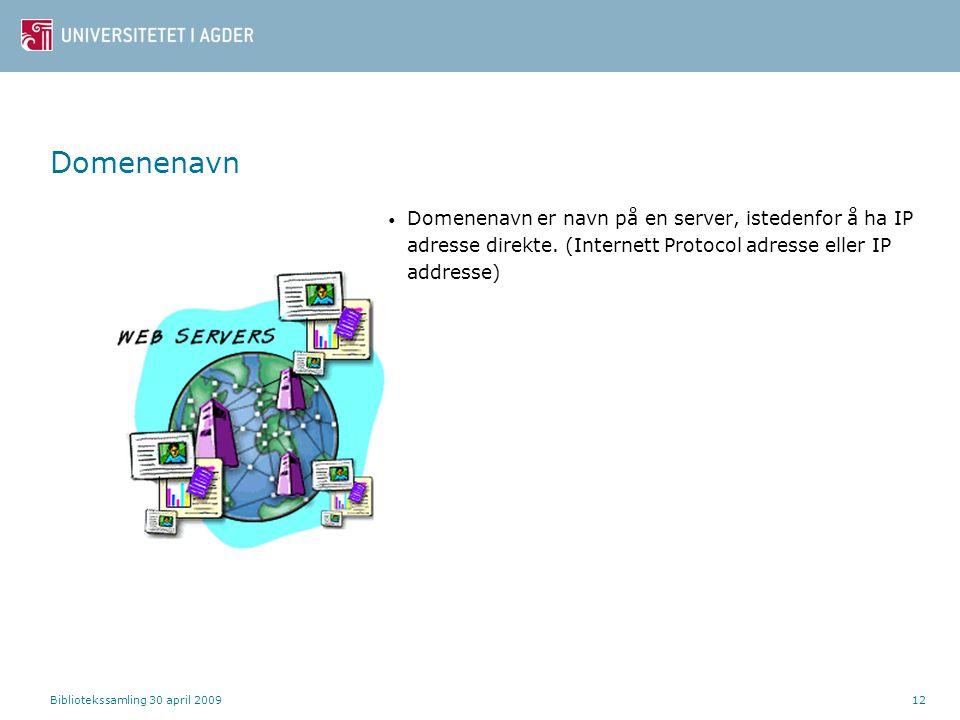 Domenenavn Domenenavn er navn på en server, istedenfor å ha IP adresse direkte. (Internett Protocol adresse eller IP addresse)