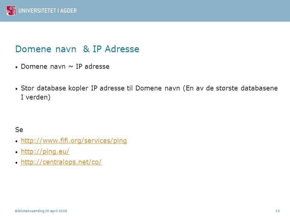 Domene navn & IP Adresse