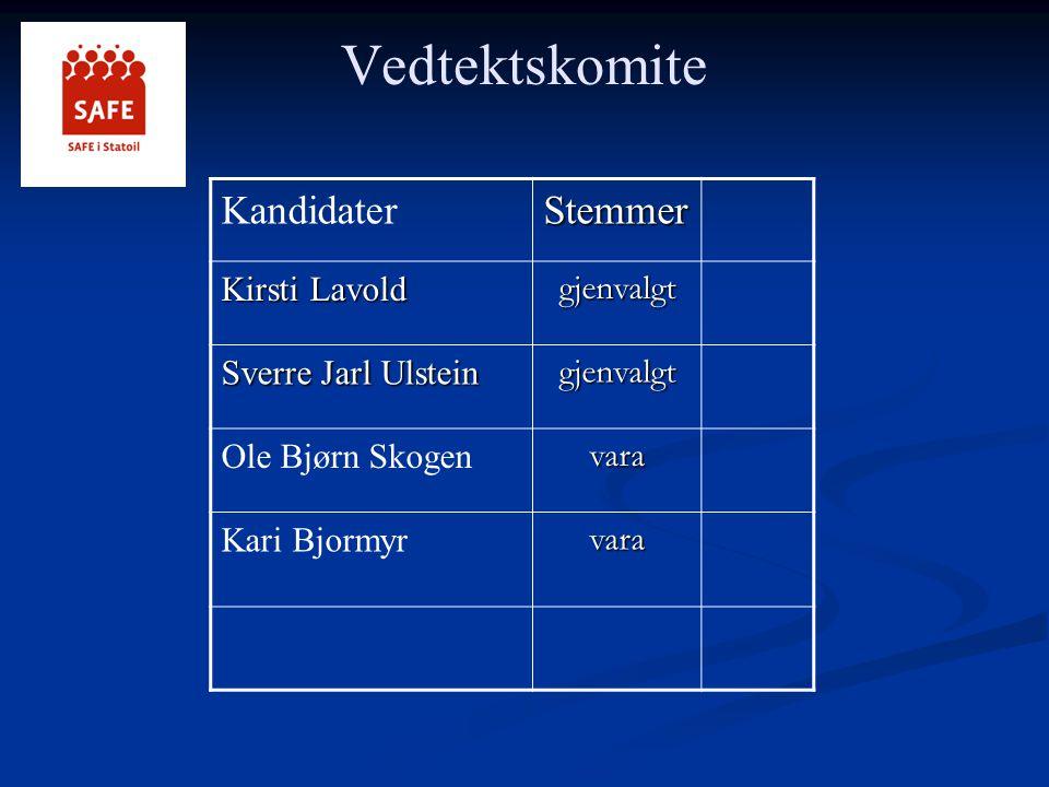 Vedtektskomite Kandidater Stemmer Kirsti Lavold gjenvalgt