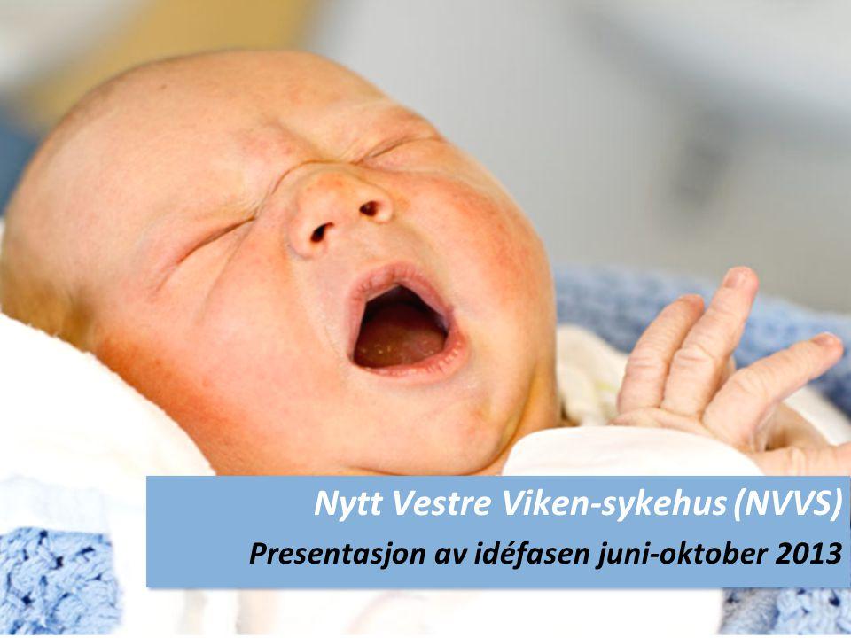 Nytt Vestre Viken-sykehus (NVVS)