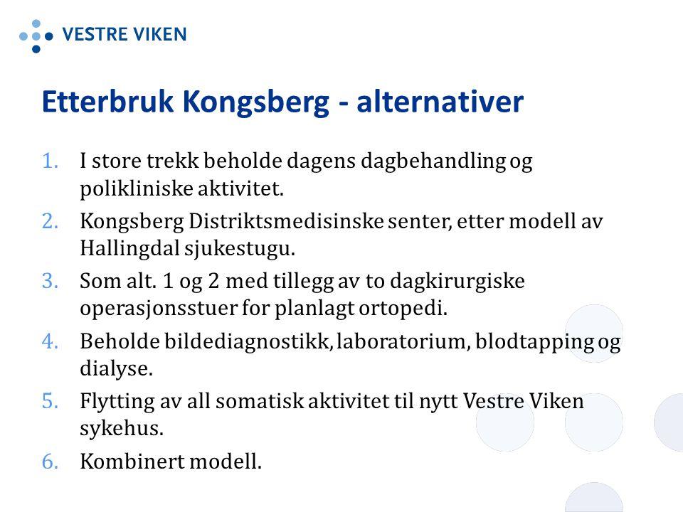 Etterbruk Kongsberg - alternativer