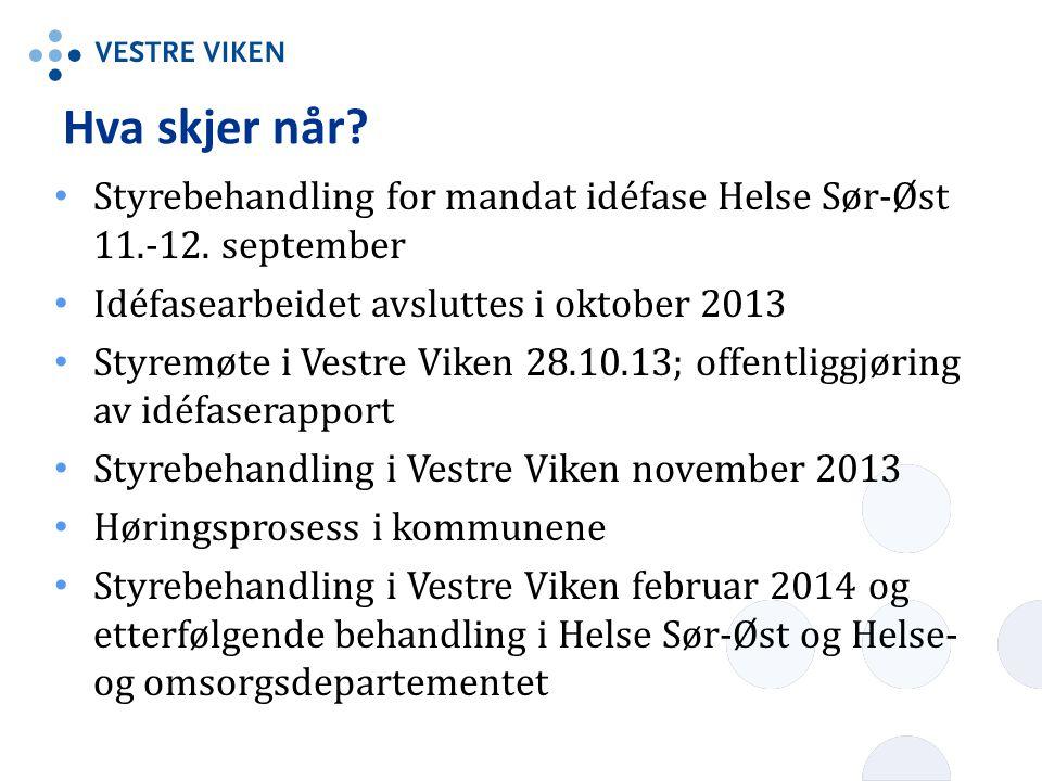 Hva skjer når Styrebehandling for mandat idéfase Helse Sør-Øst 11.-12. september. Idéfasearbeidet avsluttes i oktober 2013.
