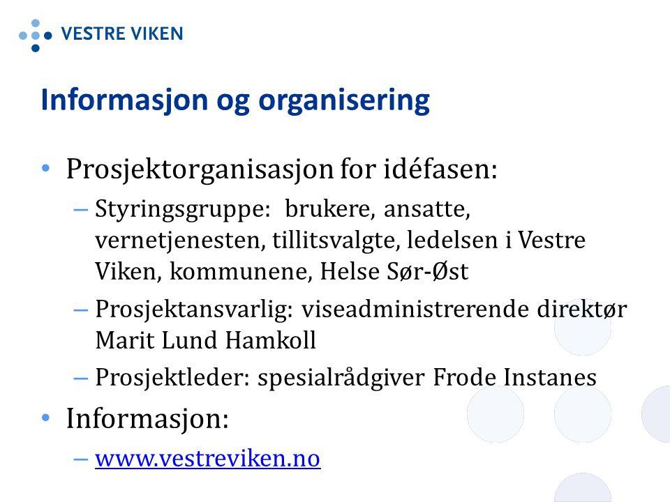 Informasjon og organisering