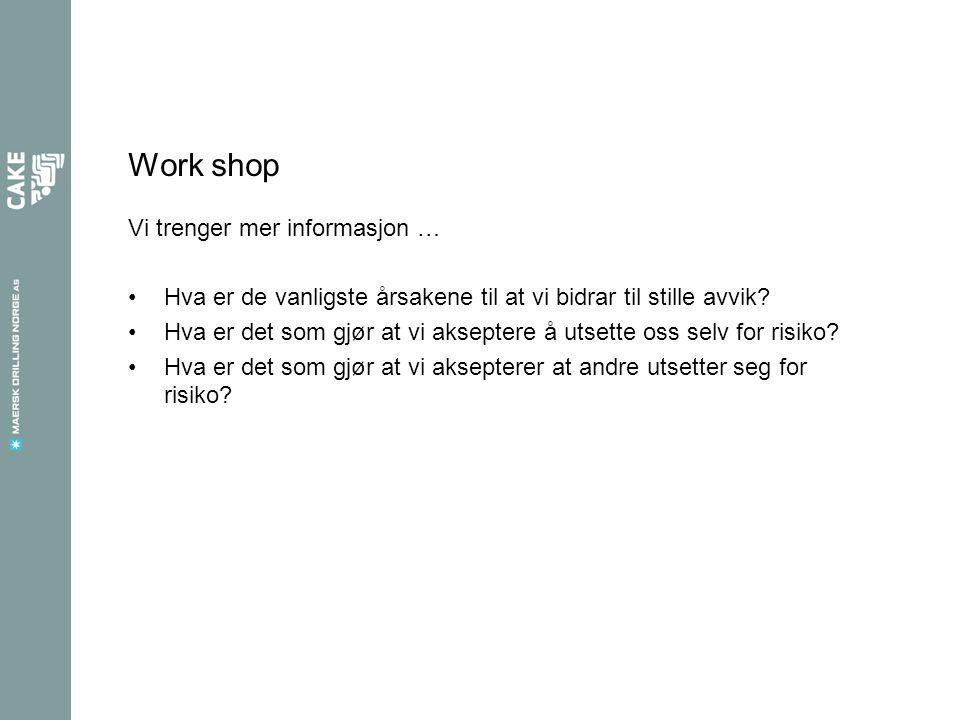 Work shop Vi trenger mer informasjon …