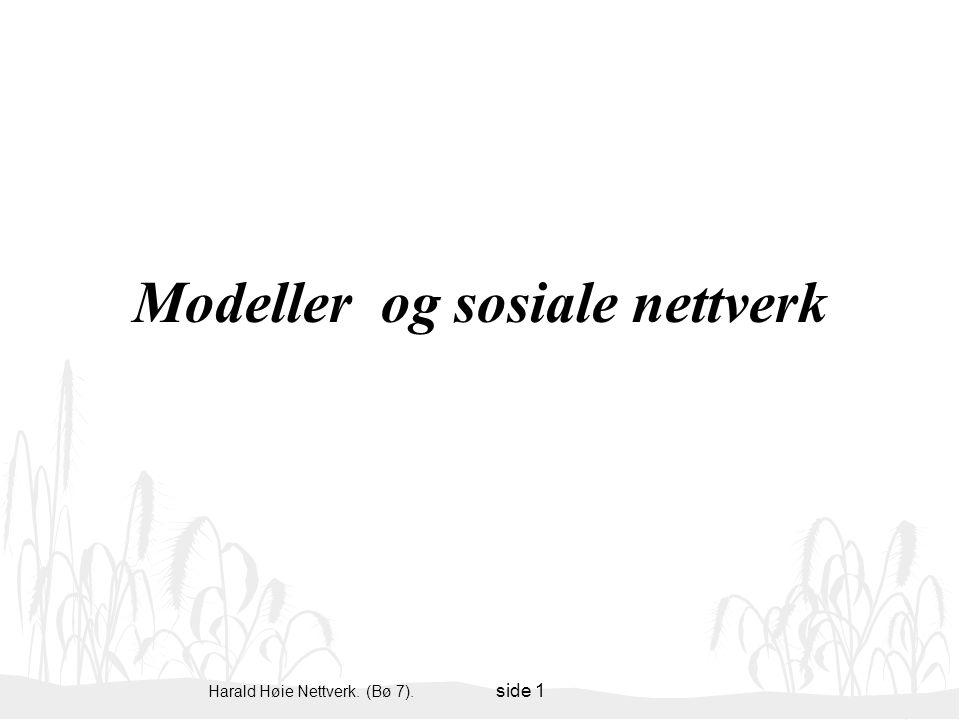 Modeller og sosiale nettverk