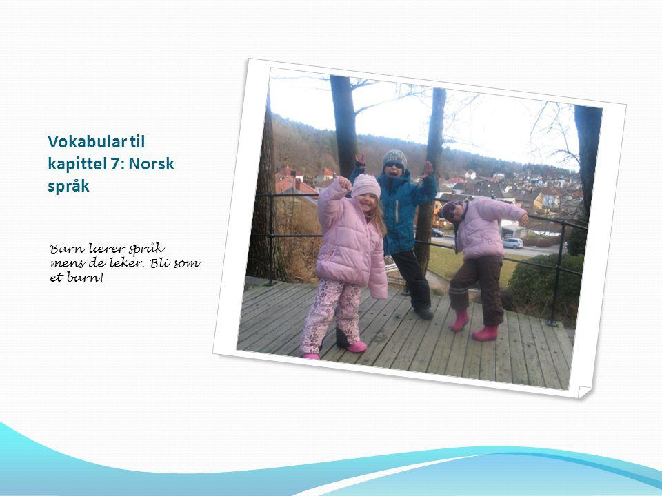Vokabular til kapittel 7: Norsk språk