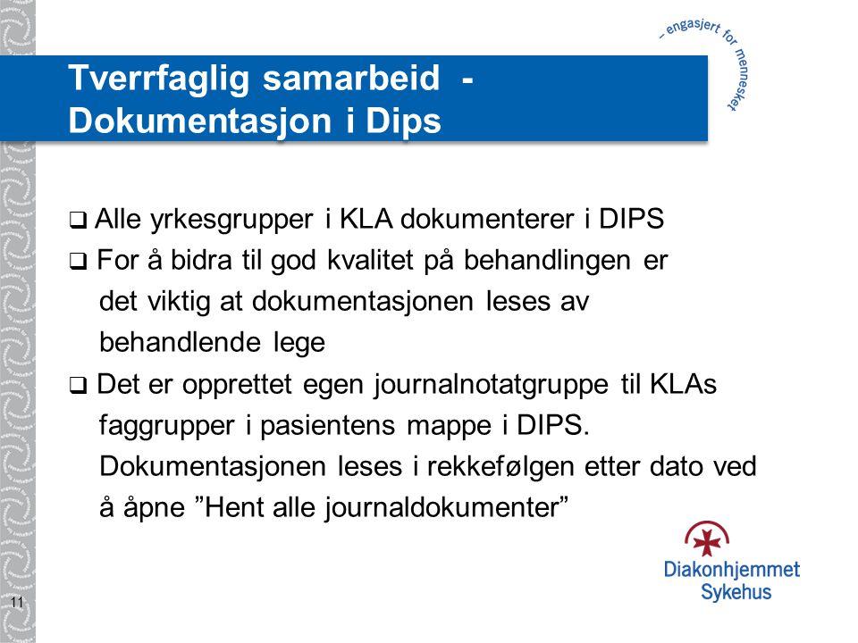Tverrfaglig samarbeid - Dokumentasjon i Dips