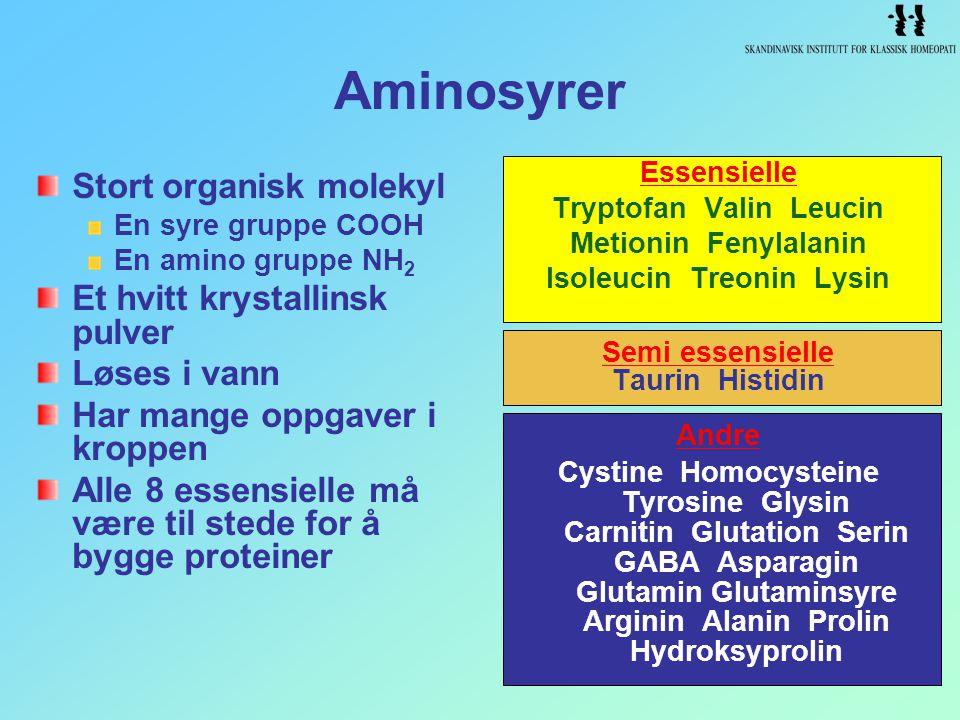 Tryptofan Valin Leucin Isoleucin Treonin Lysin