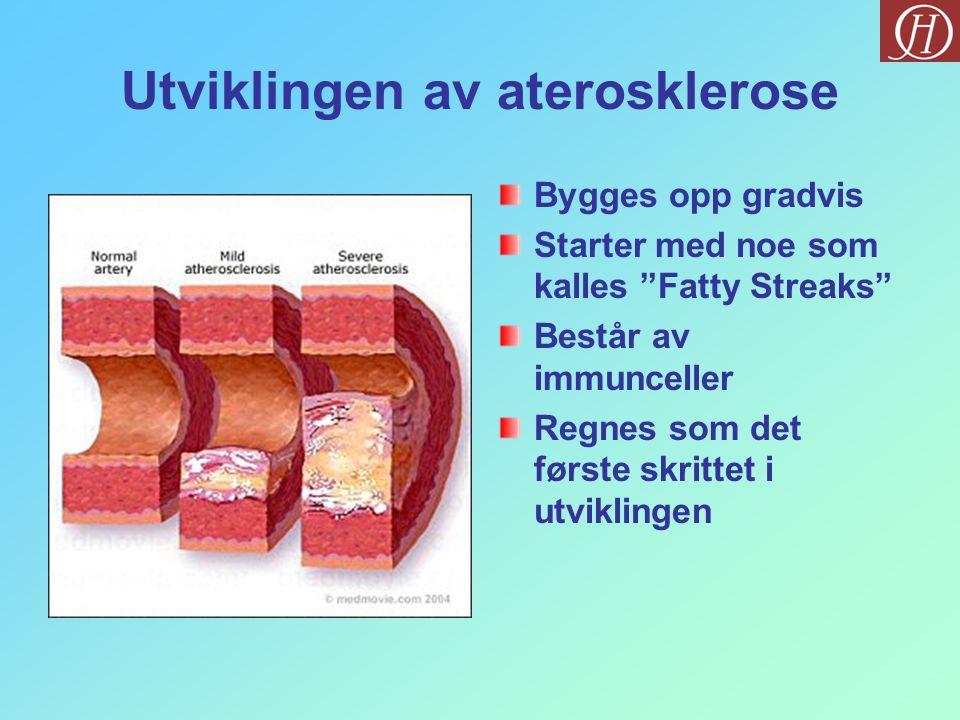 Utviklingen av aterosklerose