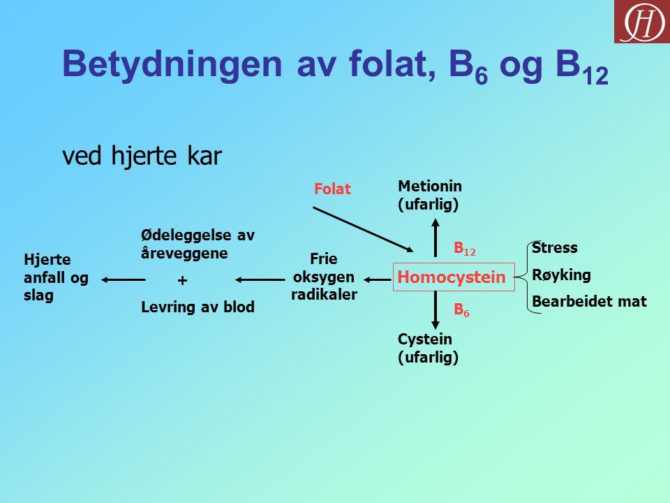 Betydningen av folat, B6 og B12