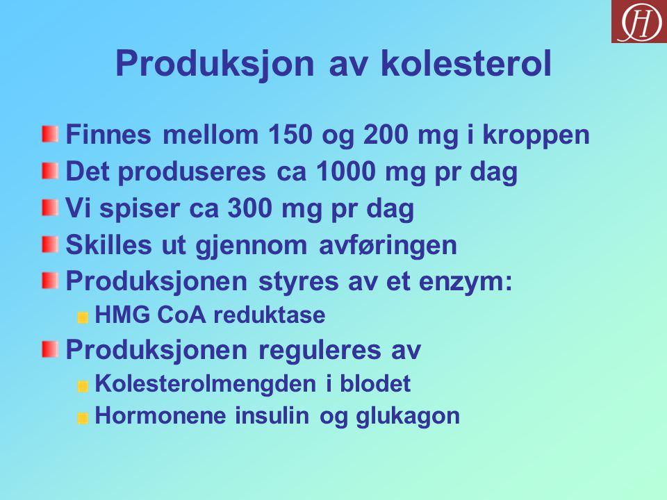 Produksjon av kolesterol