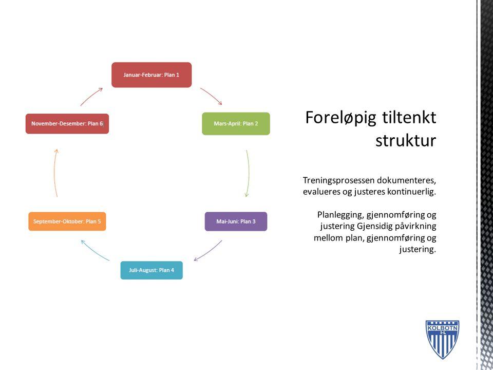 Foreløpig tiltenkt struktur Treningsprosessen dokumenteres, evalueres og justeres kontinuerlig.