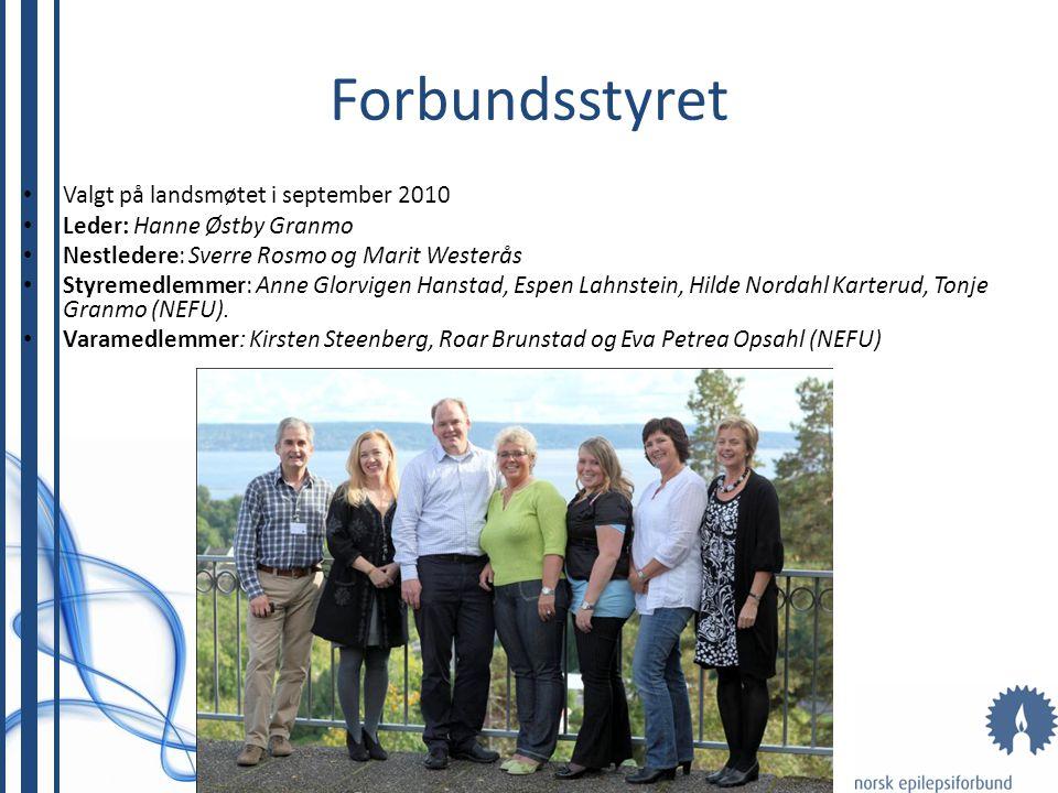 Forbundsstyret Valgt på landsmøtet i september 2010