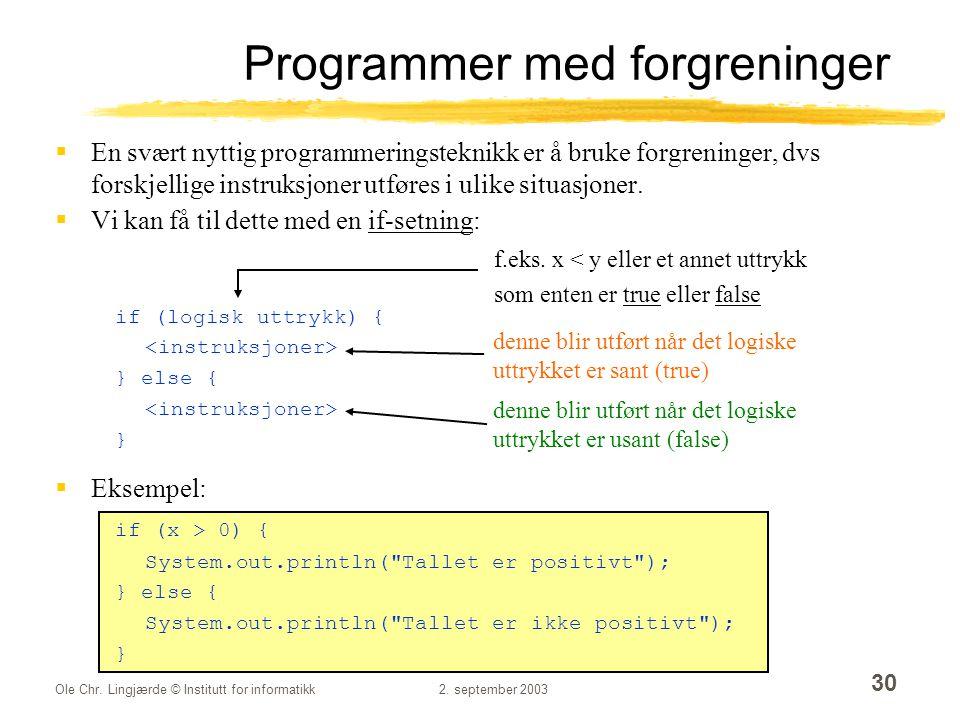 Programmer med forgreninger