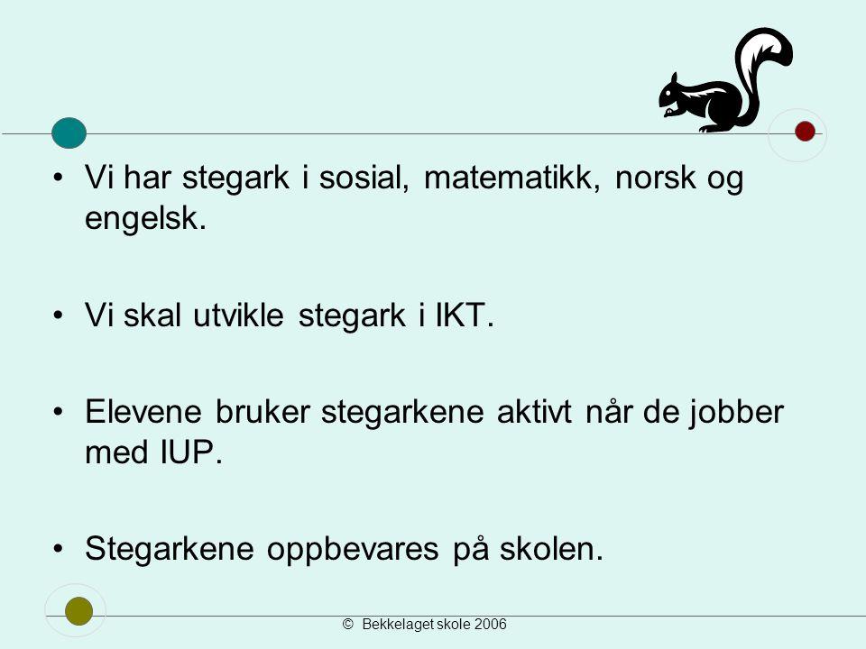 Vi har stegark i sosial, matematikk, norsk og engelsk.